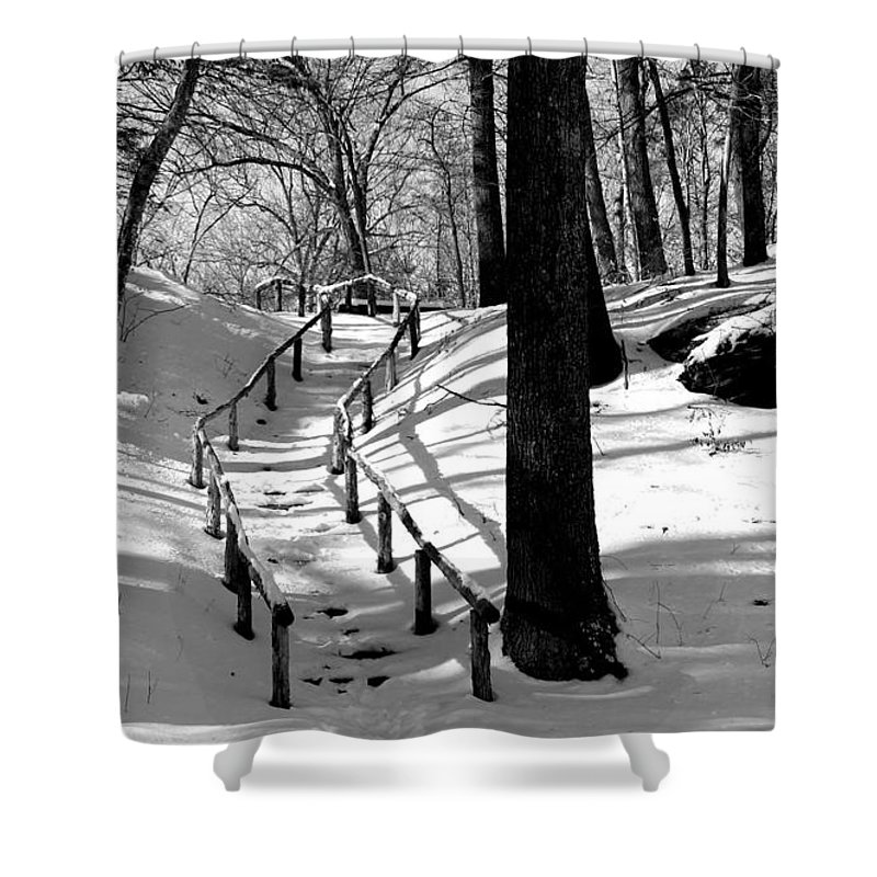 Landscape - B&w - Nature Trail On A Sunny Winter Day In Gillette Castle State Park Ct. Shower Curtain featuring the photograph Nature Trail by Ursula Coccomo