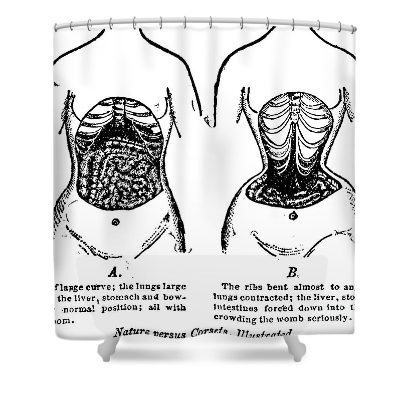 1903 Shower Curtain featuring the photograph Nature Versus Corsets, 1903 by Granger