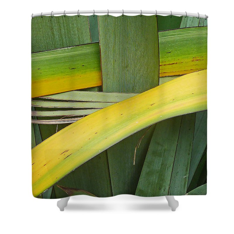 Weave Shower Curtain featuring the photograph Nature Weaving by Steve Taylor