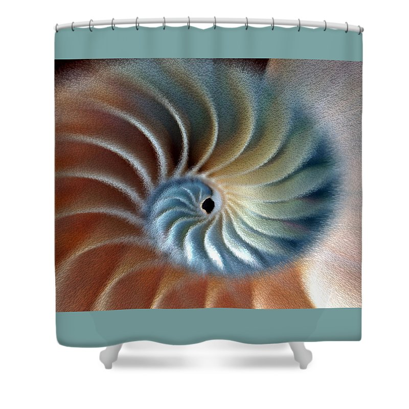 Colored Shower Curtain featuring the photograph Nautilus Impression by Phil Cardamone