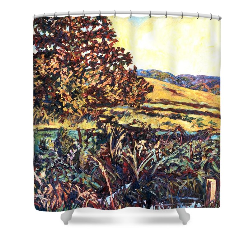Landscape Shower Curtain featuring the painting Near Childress by Kendall Kessler