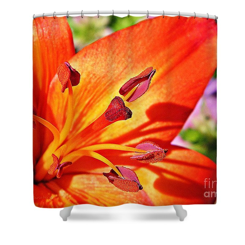 Nature Shower Curtain featuring the photograph Neon Asiatic by Chris Berry
