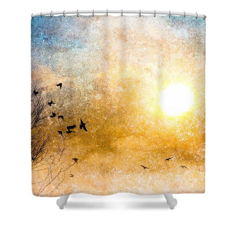 Orsillo Shower Curtain featuring the photograph New Day Yesterday by Bob Orsillo