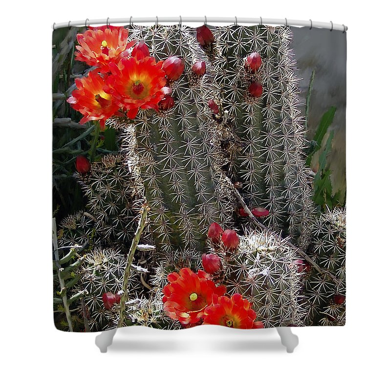 Cactus Shower Curtain featuring the photograph New Mexico Cactus by Kurt Van Wagner