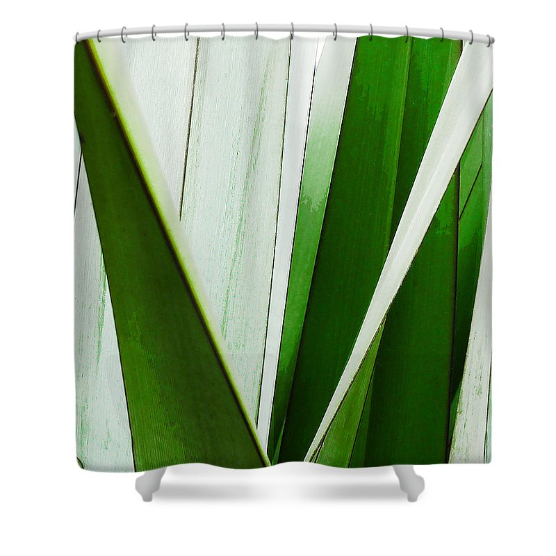 Green Shower Curtain featuring the photograph New Zealand Flax Simplified by Steve Taylor