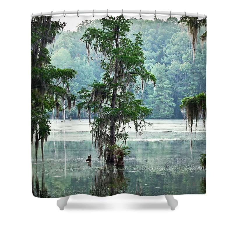 Swamp Shower Curtain featuring the photograph North Florida Cypress Swamp by Rich Leighton