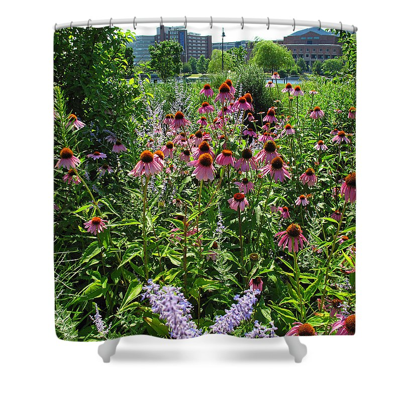 Floral Shower Curtain featuring the photograph North Point Park Flowers by Barbara McDevitt