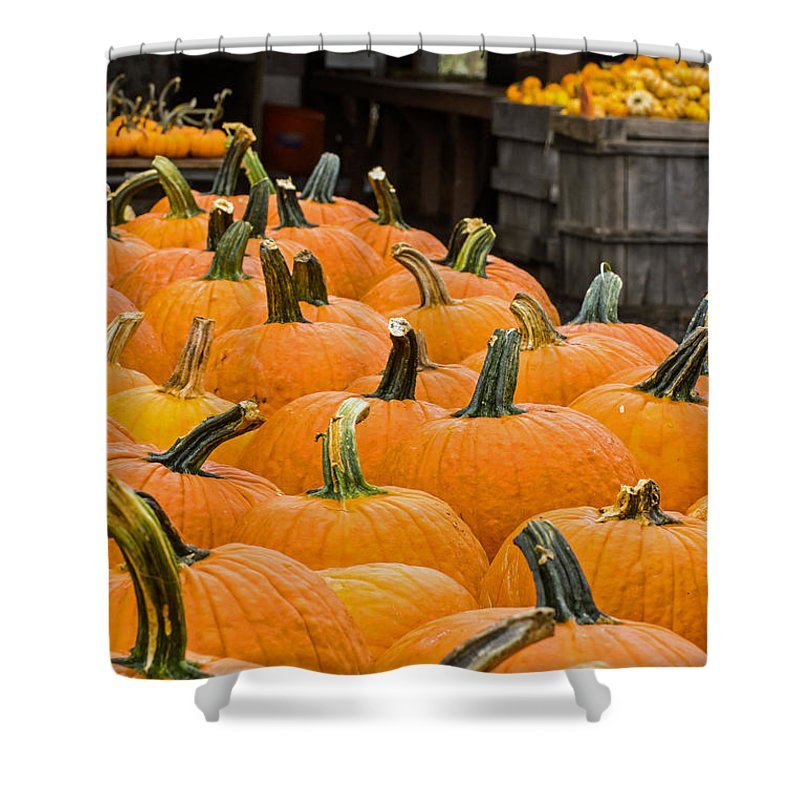Pumpkin Shower Curtain featuring the photograph October At The Farm - Pumpkins by Photographic Arts And Design Studio