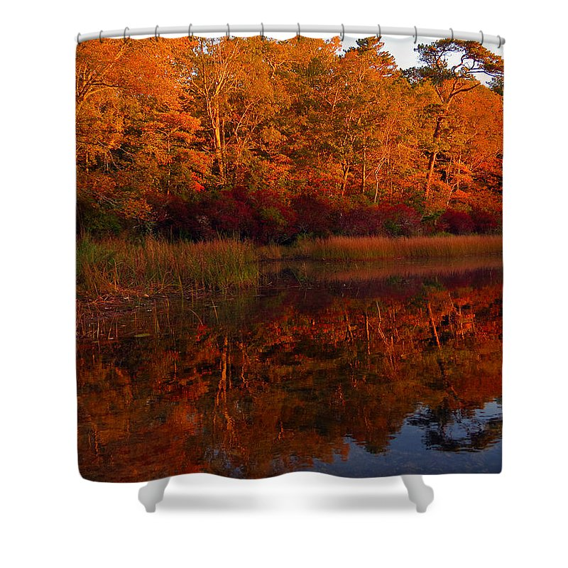 Nickerson State Park Shower Curtain featuring the photograph October Mirror by Dianne Cowen