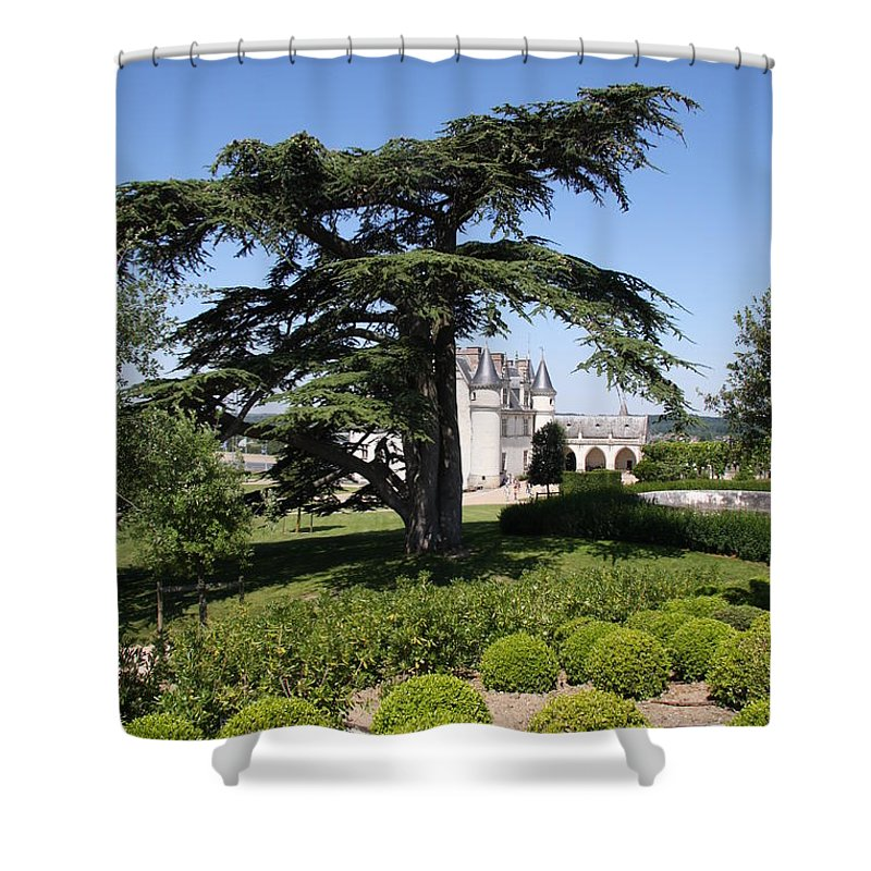 Cedar Shower Curtain featuring the photograph Old Cedar At Chateau Amboise by Christiane Schulze Art And Photography