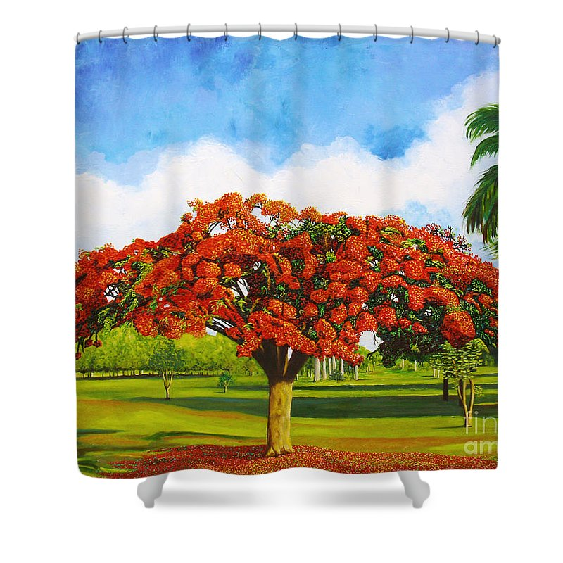 Cuba Art Shower Curtain featuring the painting Old Flamboyan by Jose Manuel Abraham