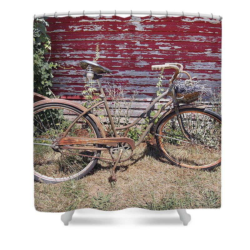 Bicycle Shower Curtain featuring the photograph Old Rusty Bicycle With Basket Of Lavender Flowers by Jit Lim