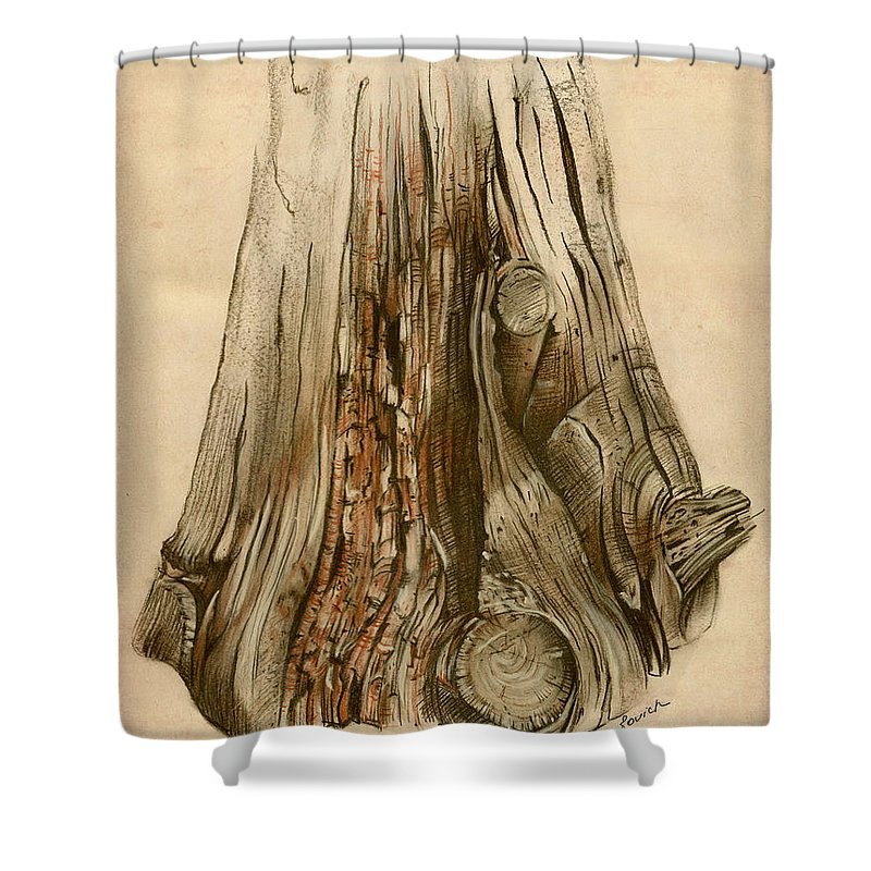 Old Shower Curtain Featuring The Painting Tree Stump