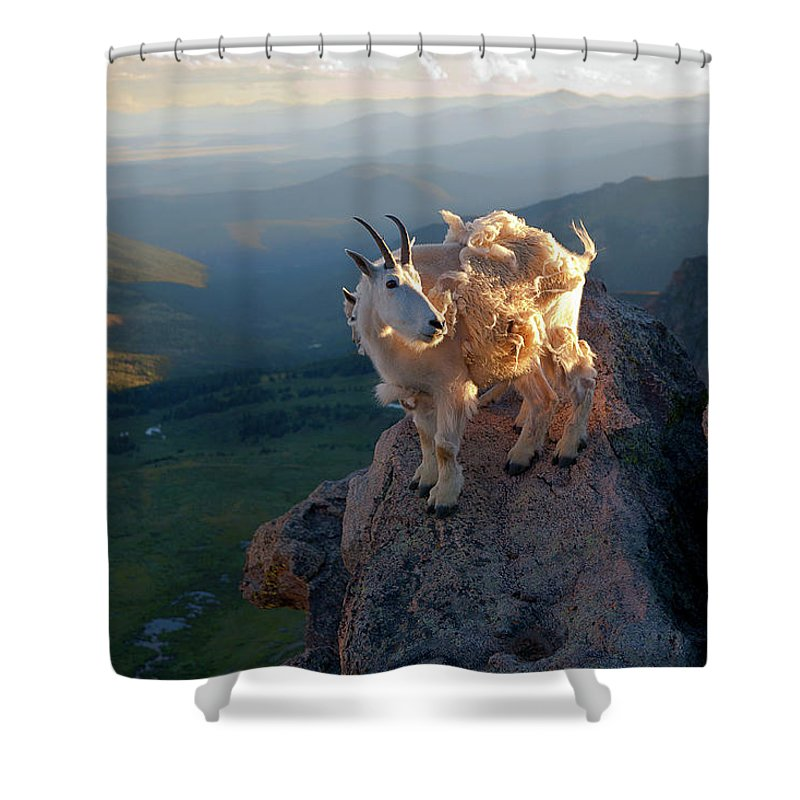 Mountain Goats; Sunset; Overlook; Mountain Momma; Goat; Nature; Wildlife; Baby Animal; Mother; Precipice; Outcrop; Cliff; Windy; Shower Curtain featuring the photograph On A Clear Day by Jim Garrison