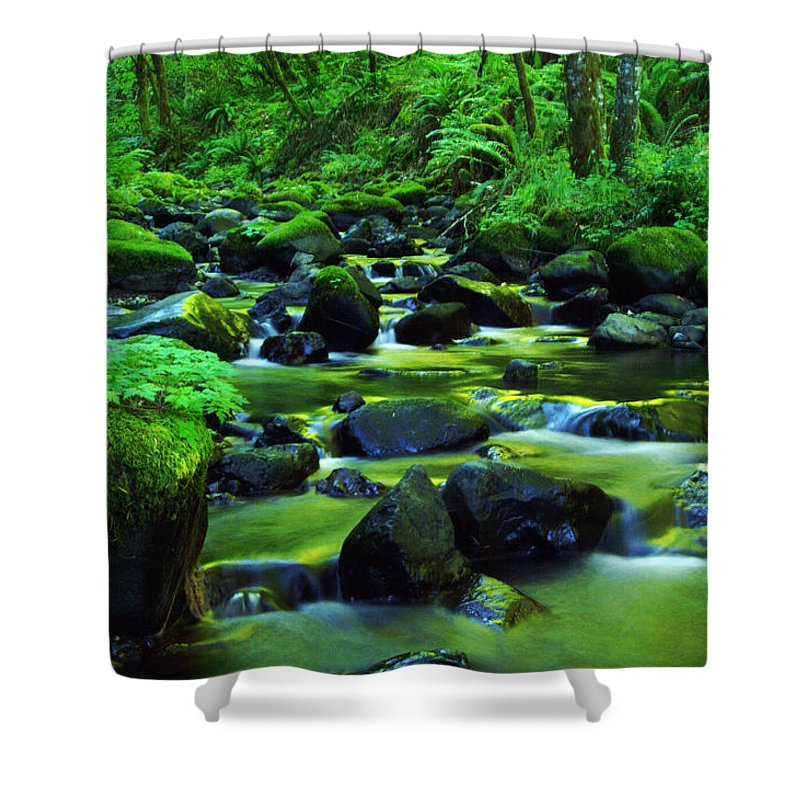 Oregon Streams Shower Curtain featuring the photograph On Golden Waters by Jeff Swan