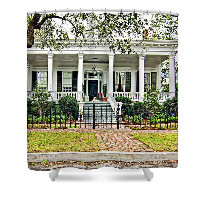 Mardi Gras Shower Curtain featuring the photograph On Guard In New Orleans by Steve Harrington