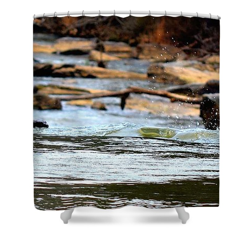 Sweetwater Creek State Park Shower Curtain featuring the photograph On The Creek by Tara Potts