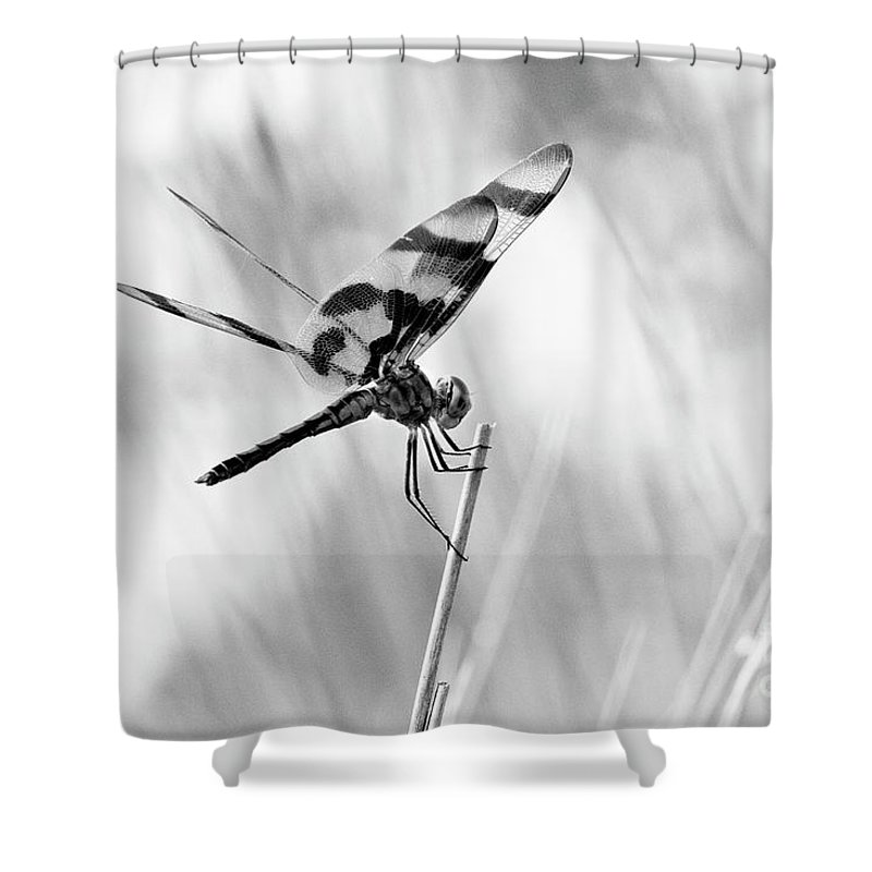 Monroe Shower Curtain featuring the photograph On The Launch Pad by Scott Pellegrin