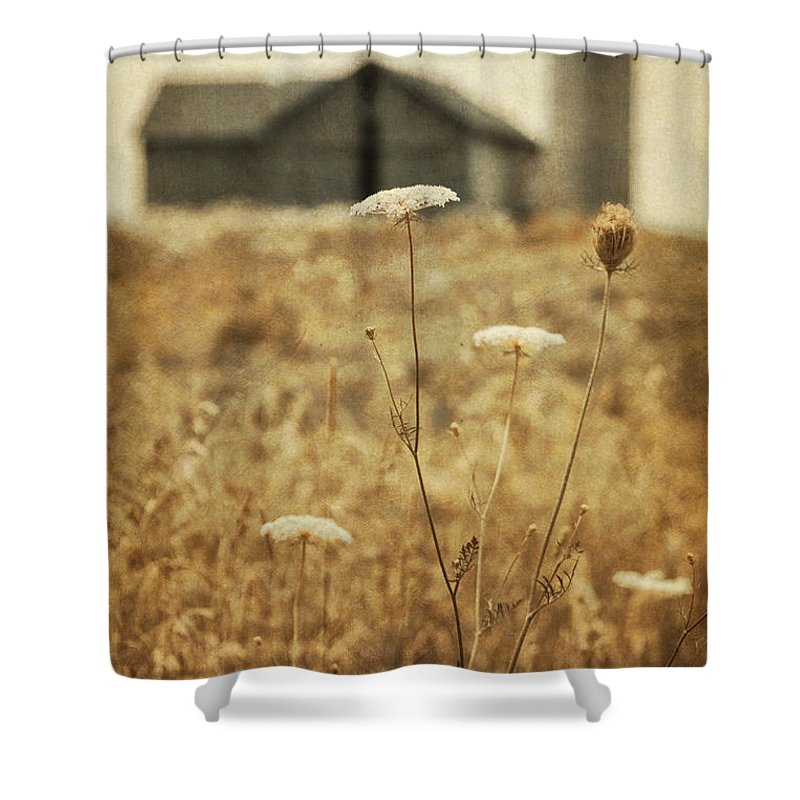 Old; Farm; Barn; Rural; Outside; Outdoors; Aged; Silo; Building; Architecture; Wood; Wooden; Grass; Worn; Field; Weeds; Out Of Focus; Blur; Blurry; Blurred; Queen Anne's Lace; Dried; Dry; Fall; Autumn; Brown; Carrot Weed Shower Curtain featuring the photograph Once Upon A Memory by Margie Hurwich