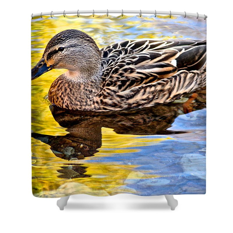 Wildlife Shower Curtain featuring the photograph One Leaf Two Ducks by Frozen in Time Fine Art Photography