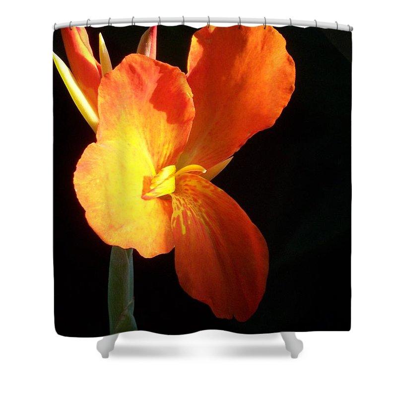 Garden Shower Curtain featuring the photograph Orange Flower Canna by Eric Schiabor