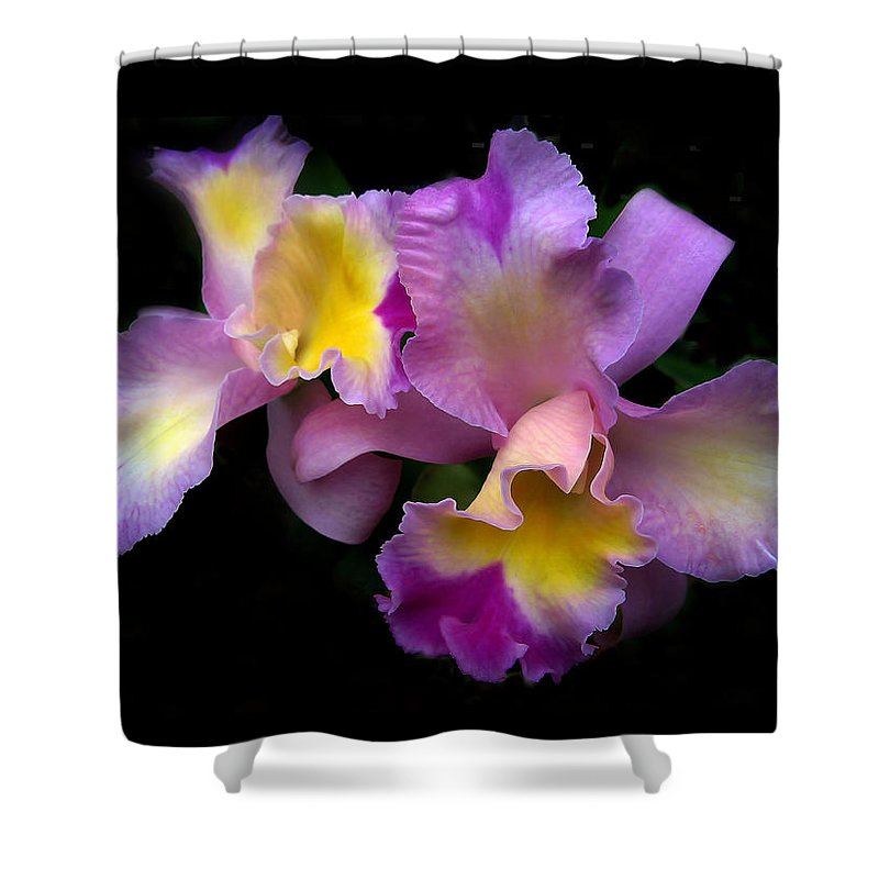 Flowers Shower Curtain featuring the photograph Orchid Embrace by Jessica Jenney