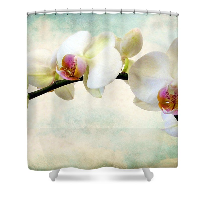 Flowers Shower Curtain featuring the photograph Orchid Heaven by Jessica Jenney