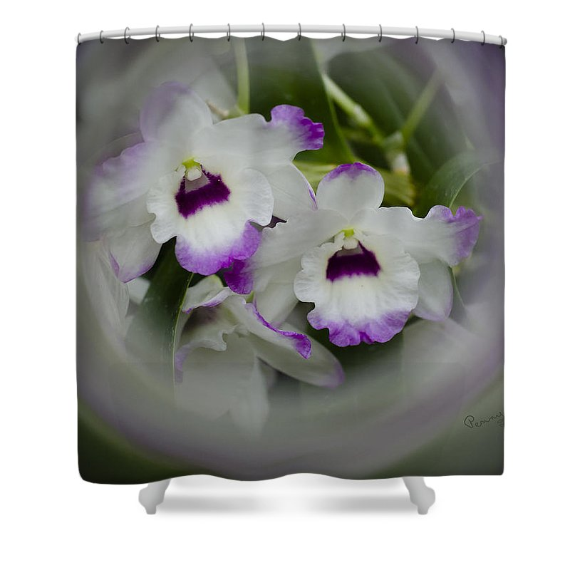 Flowers Shower Curtain featuring the photograph Orchid Wine Swirl by Penny Lisowski