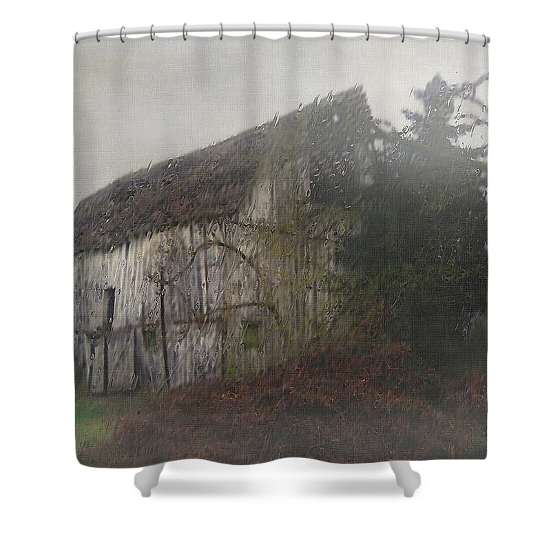 Barn Shower Curtain featuring the painting Oregon Relic by RC deWinter