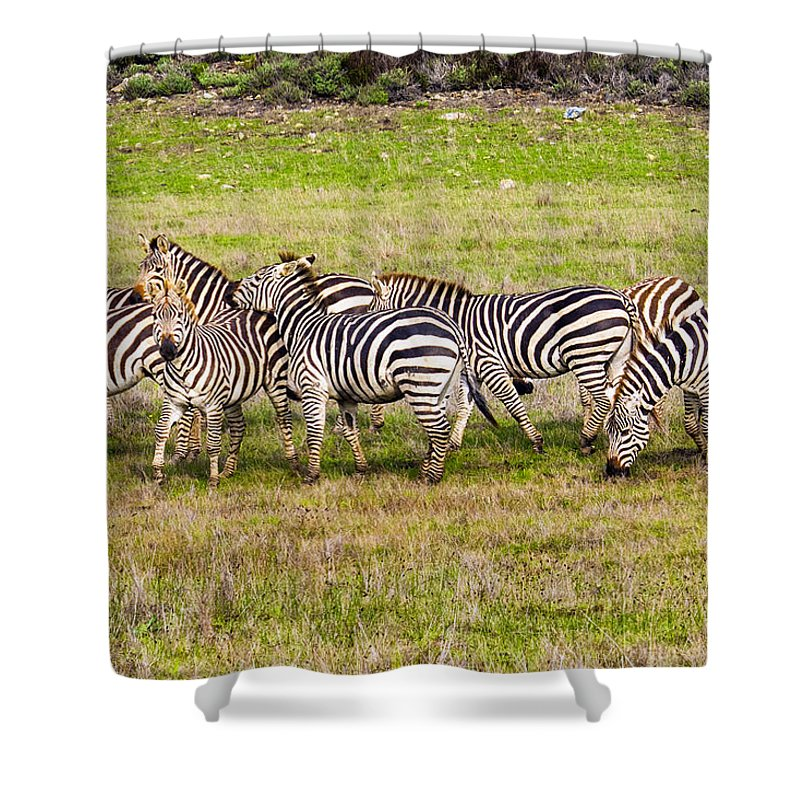 Hearst Castle Shower Curtain featuring the photograph Out Of Africa by Doug Holck