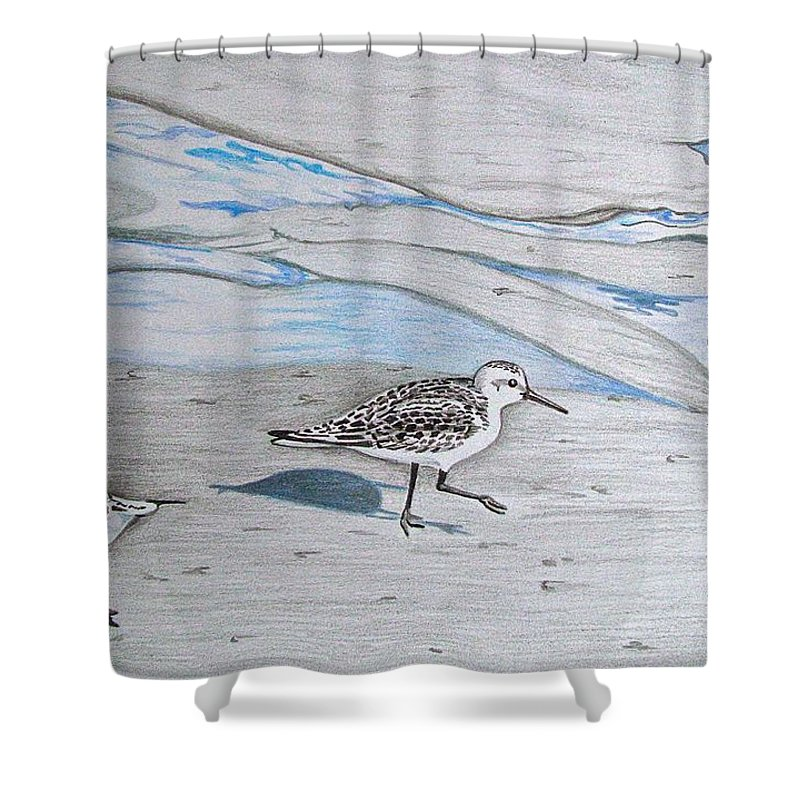 Birds Shower Curtain featuring the drawing Overcast Day With Sanderlings by Linda Williams