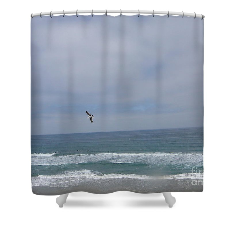 Sea Gull In Flight Shower Curtain featuring the photograph Pacific Coast Flight by Mary Brhel