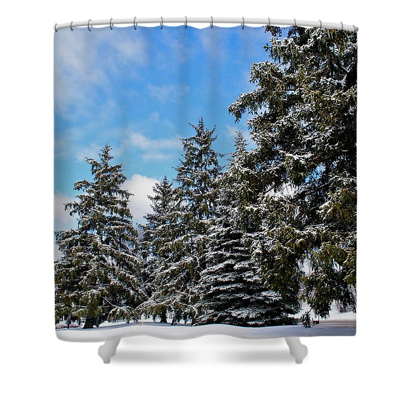 Painted Shower Curtain featuring the photograph Painted Pines by Frozen in Time Fine Art Photography