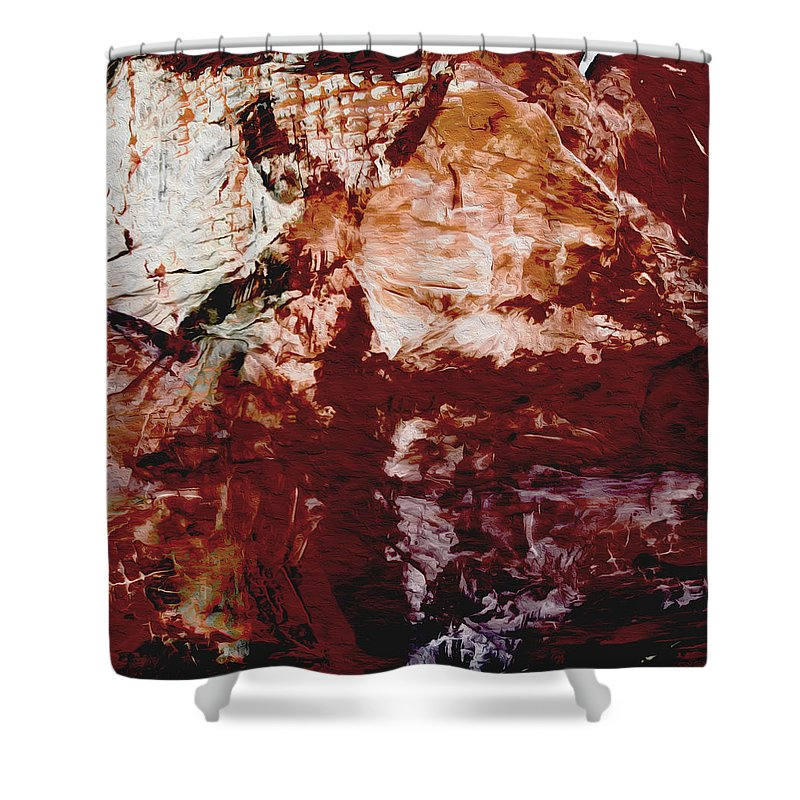 Abstract Shower Curtain featuring the photograph Painted Rock by Stephanie Grant
