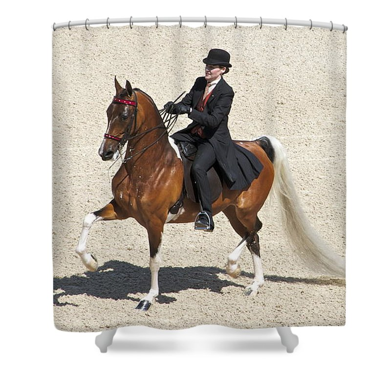 Saddlebred Shower Curtain featuring the photograph Painted Saddlebred by Alice Gipson