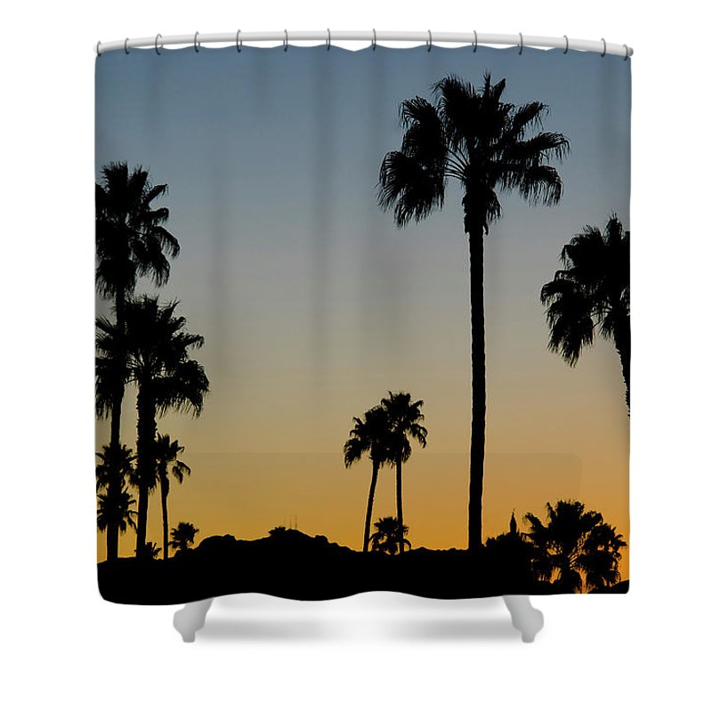Scenics Shower Curtain featuring the photograph Palm Trees At Sunset by Chapin31