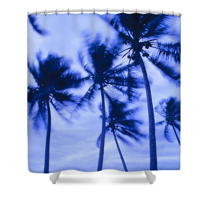 Blue Shower Curtain featuring the photograph Palms In Storm Wind-bora Bora Tahiti by Frans Lanting MINT Images