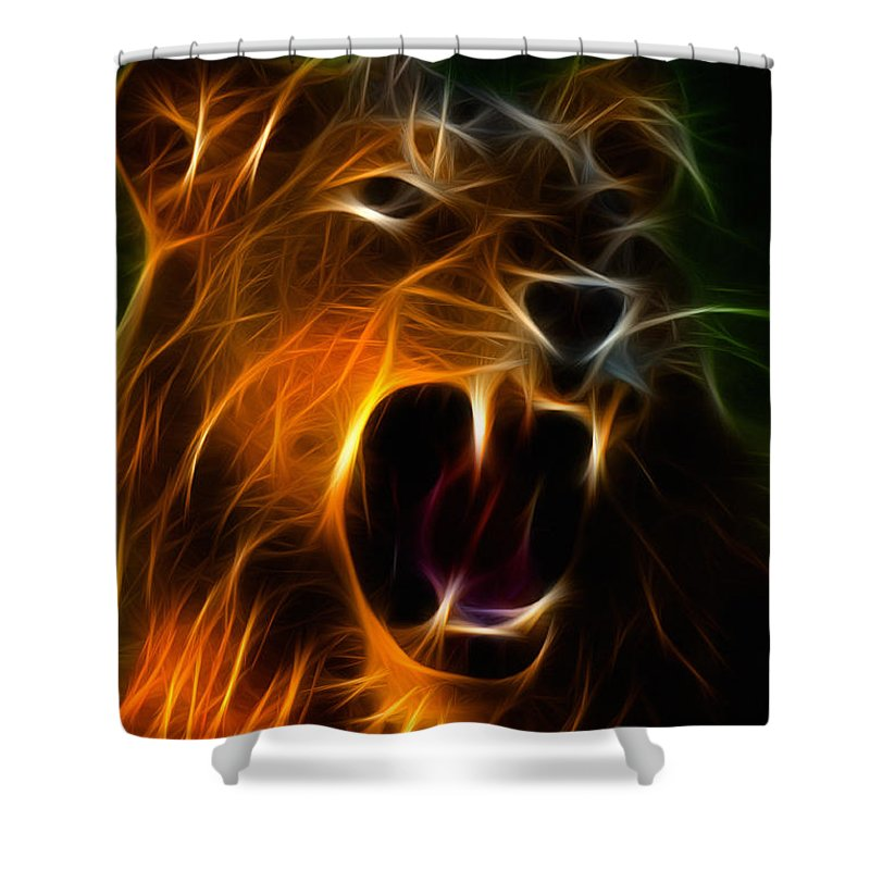 Lion Shower Curtain featuring the photograph Panthera Leo by Zapista