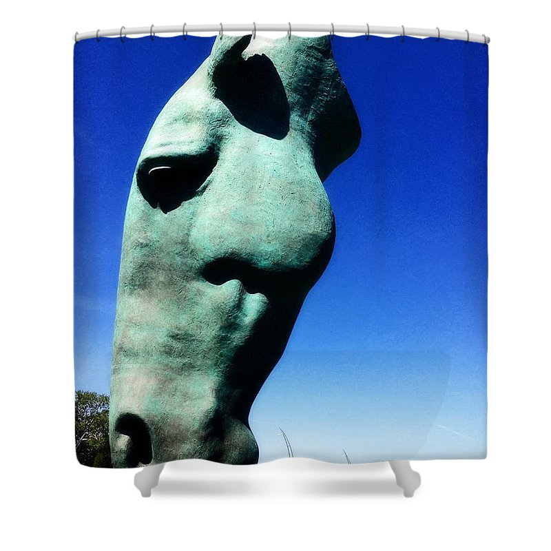 Parx Casino Shower Curtain featuring the photograph Parx Horse by Alice Gipson