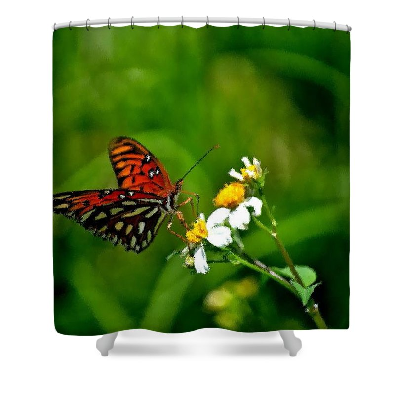 Passion Butterfly Shower Curtain featuring the photograph Passion Butterfly Painted by Tara Potts