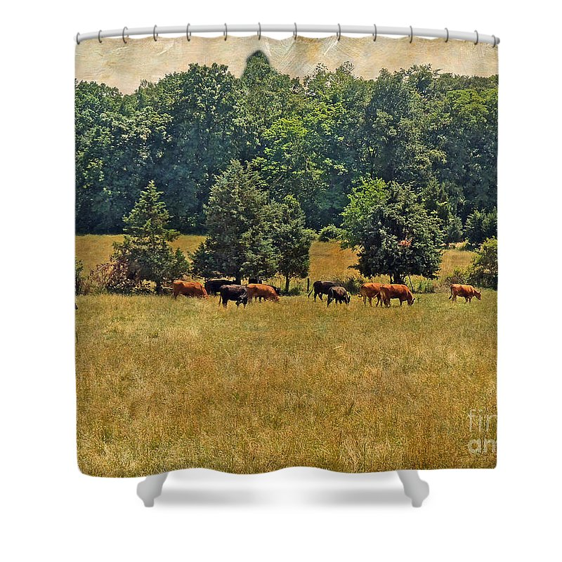 Pastoral Shower Curtain featuring the photograph Pastoral by Mother Nature