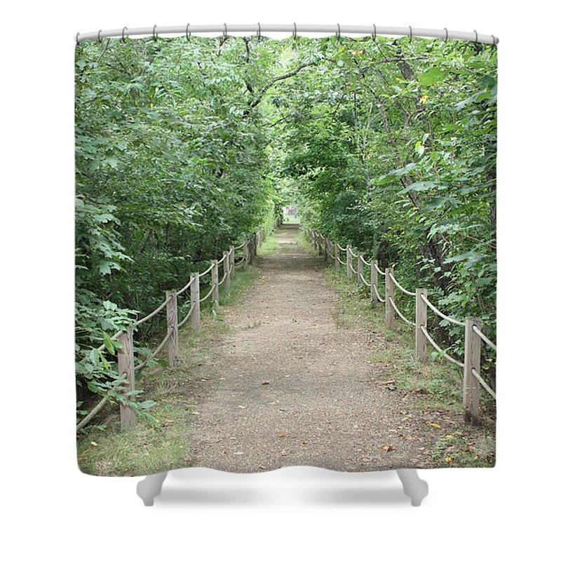 Pathway Through The Forest Shower Curtain featuring the photograph Pathway Through The Forest by John Telfer