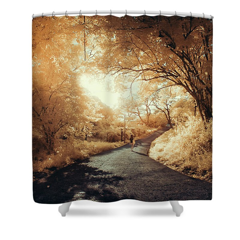 Shadow Shower Curtain featuring the photograph Pathway To Wonderland by D3sign