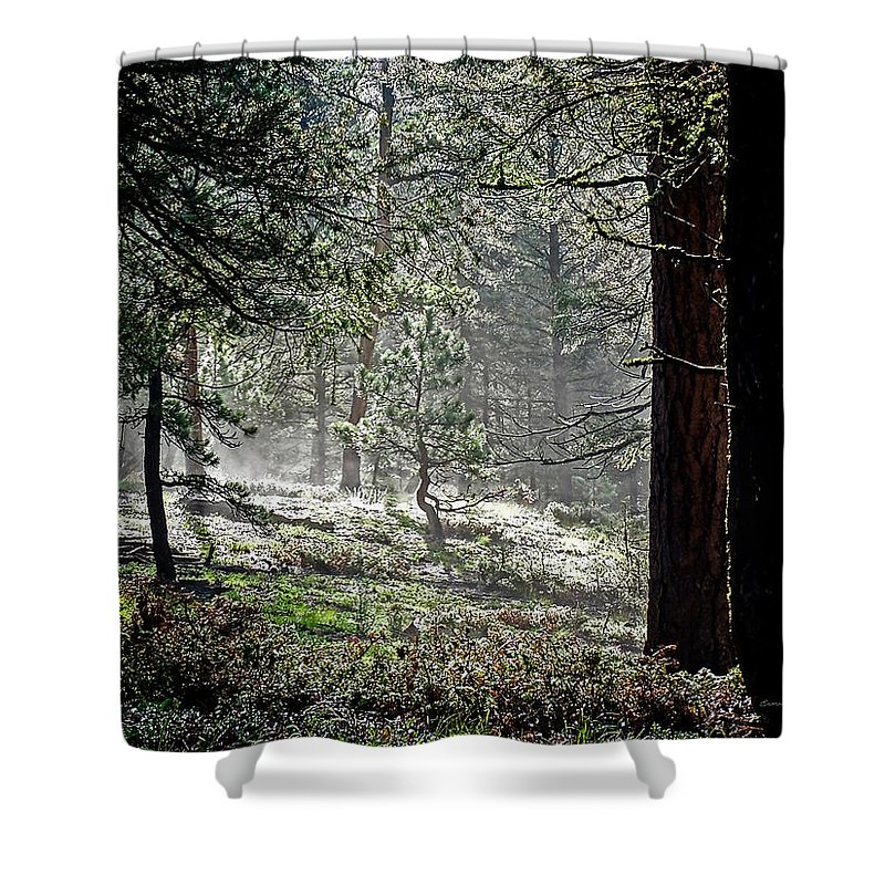 Colorado Shower Curtain featuring the photograph Peaceful Morning by Ernie Echols
