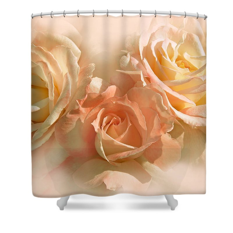 Rose Shower Curtain featuring the photograph Peach Roses In The Mist by Jennie Marie Schell