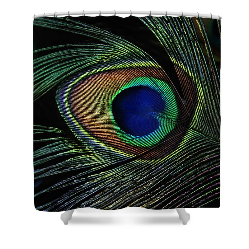 Animals Shower Curtain featuring the photograph Peacock Eye by Joachim G Pinkawa