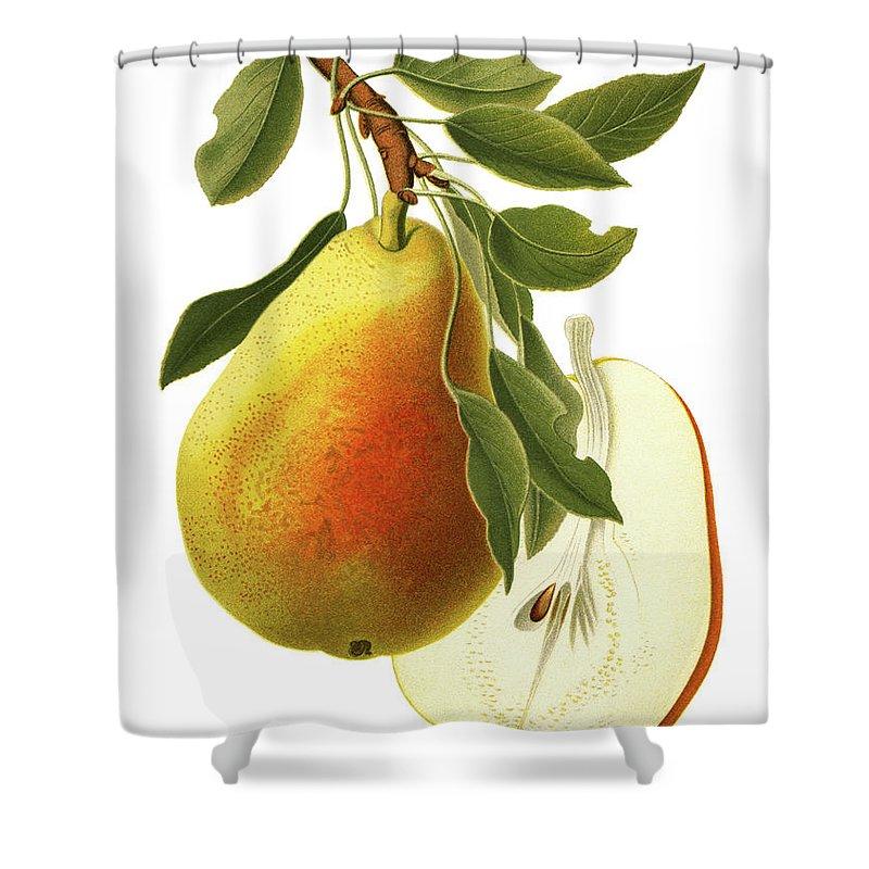 Art Shower Curtain featuring the digital art Pear by Ivan-96