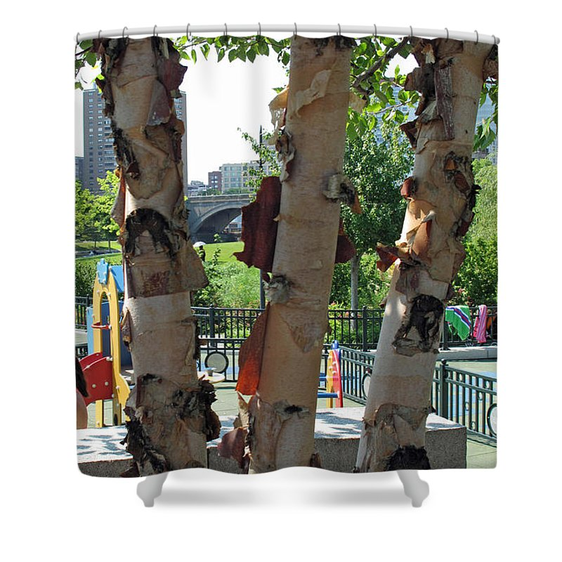 Tree Shower Curtain featuring the photograph Peeling Bark by Barbara McDevitt