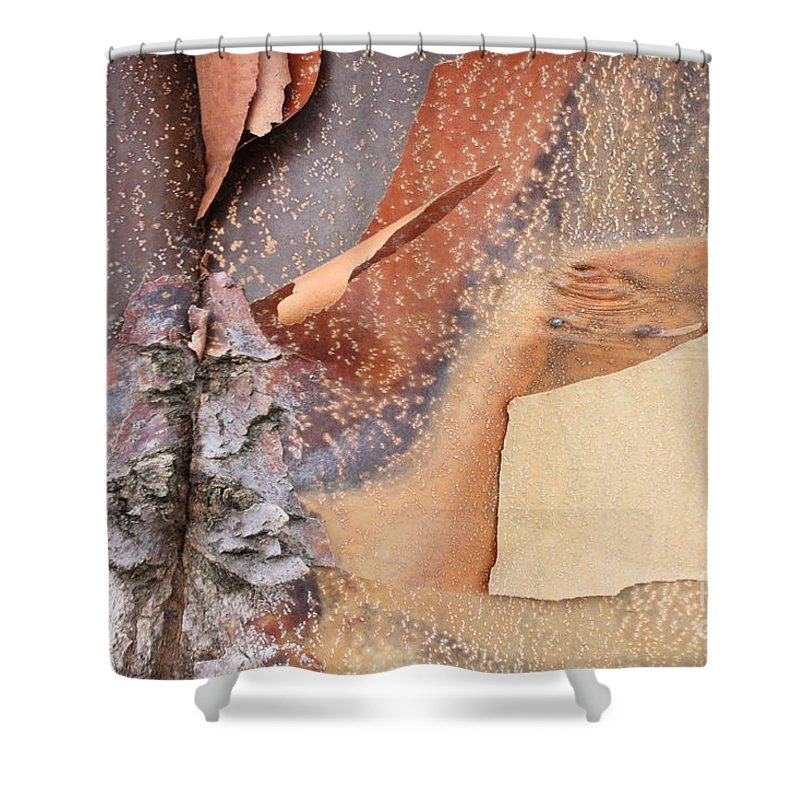 Bark Shower Curtain featuring the photograph Peeling Bark - Horizontal by Carol Groenen