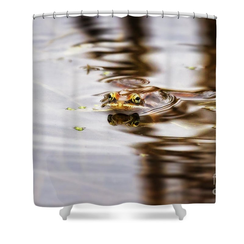 Killian Shower Curtain featuring the photograph Peep by Jan Killian